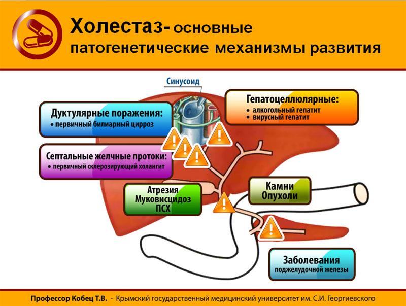 Отзывы и коментарии при лечении халитозе у людей в Нефтекамске,Армизонском,Рыльске